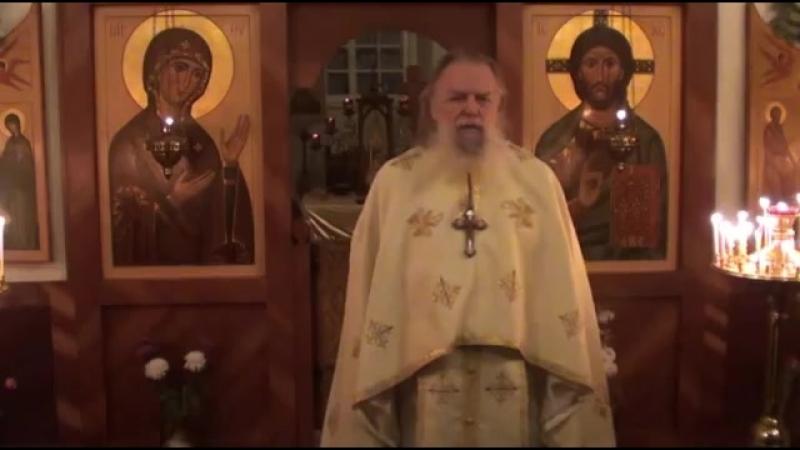 Священник Павел Адельгейм Проповедь на Литургии в храме свв Жён мироносиц Псков 20 1 2013