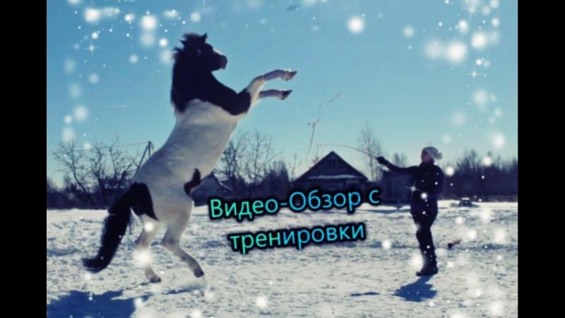 ВИДЕО-ОБЗОР С ТРЕНИРОВКИ 20.03.18г. ИНДЕЕЦ ХОДИТ НА СВЕЧКАХ!?