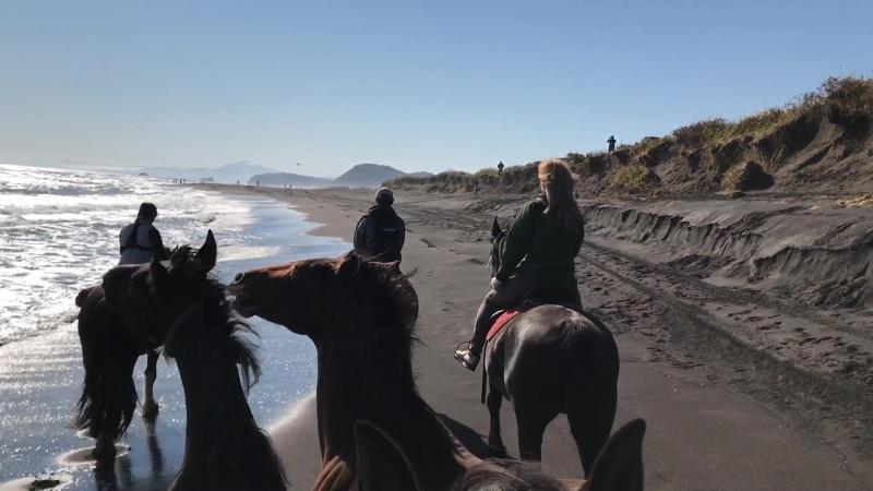 Конная экскурсия к берегу Тихого океана