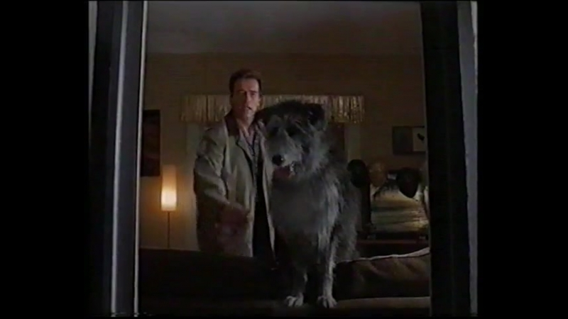 Шестой день / The 6th Day (2000) VHS