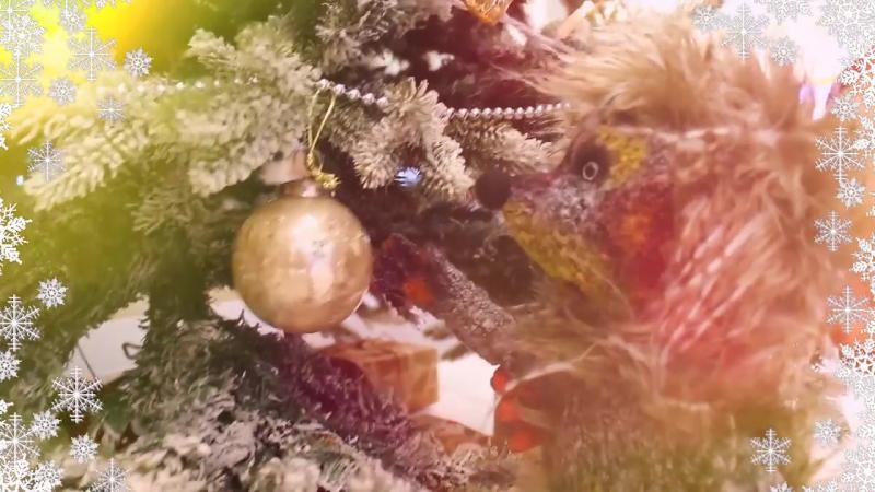 Новогодняя сказка «Ёлка для Ёжика» для малышей от 2 до 5 лет в «КидБурге»