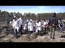 Студенты ТюмГУ участвовали в акции по посадке деревьев в Тюменском участковом лесничестве