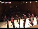 【混声合唱】Preserved Roses / 革命デュアリズム - Chor Gnosina