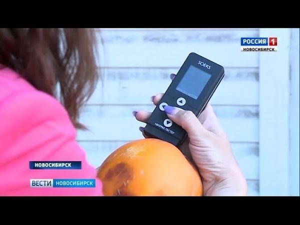 «Вести» проверили арбузы на рынках Новосибирска на нитраты