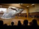 11 septembre des avions holographiques commes ces animaux marins Projection holographique