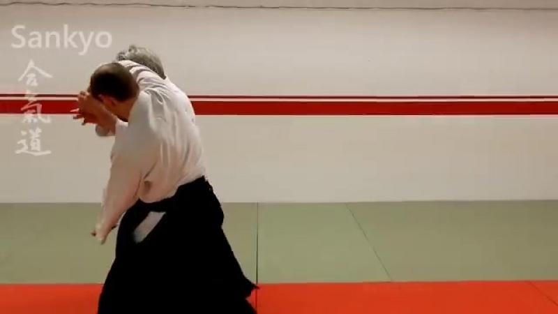 Aikido technique SANKYO on strike and grip attacks by Stefan Stenudd 7 dan