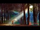 Ошо - Вечерние медитации. 3ч. Прыжок из тьмы к свету. (320 кбит/с - Объем.звук)(РАДО100.УКР)
