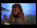 «Король Лев-2: Гордость Симбы» на Канале Disney!