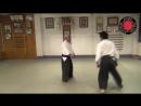 AIKIDO Fukakusa Shihan- Shomenuchi Iriminage in three directions .mp4