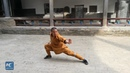 Amazing Kung Fu: Fast and powerful martial arts display at Mt Song