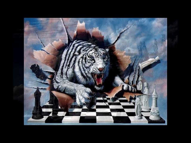 Андрей Бузуев Шахматная доска