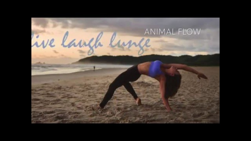 Animal Flow Fitness with Jaz Ellery
