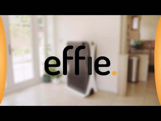 Effie - never iron again