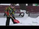 Чи впоралися комунальники з наслідками снігопаду соціальне опитування