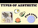 TYPES OF AESTHETIC How to be Aesthetic Find yours
