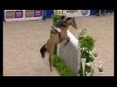 Мировой рекорд - Конкур без седла! Роберт Уитакер 212см
