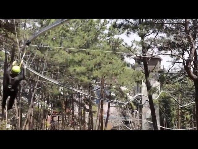 Подвесные американские горки