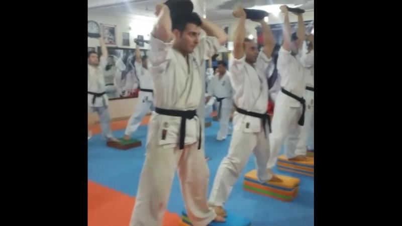 СФП в подготовке бойца Кёкусинкай карате. Крепкие ноги и сильный плечевой пояс. Подготовка бойца vk.com/oyama_mas