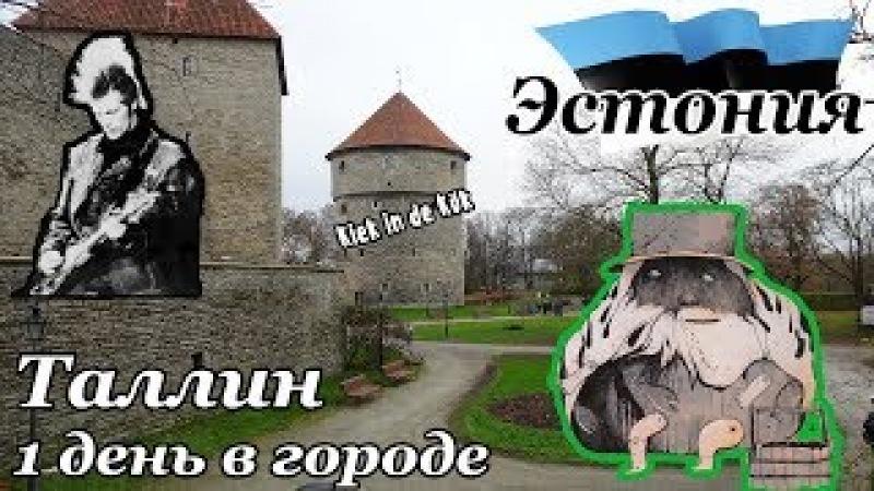 [Эстония] ч.1: Таллин. 1 день в городе - подземелье Кик ин де Кёк (Kiek in de Kök)