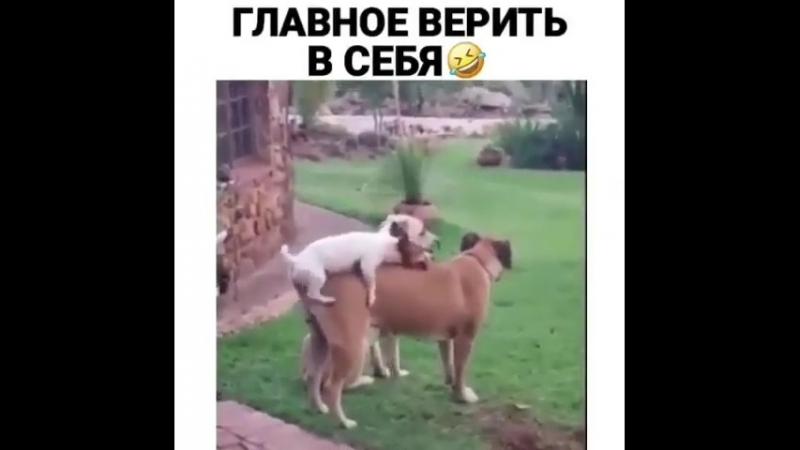 Главное верить в себя)