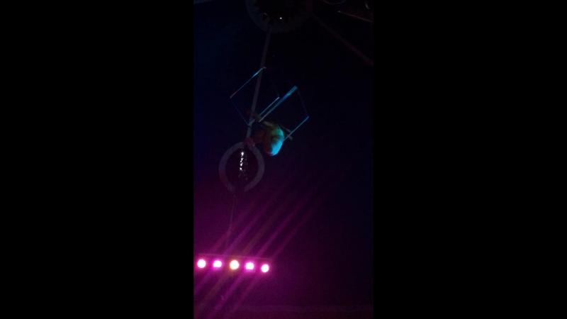 шикарная воздушная гимнастка из цирка Шапито Фортуна