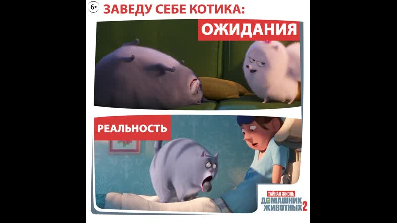 SP2_GIF_CHLOE_1x1_OV_EN_TEXTED_mov_ru
