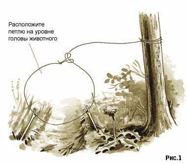 DuFAxUp9 CE - Выживания в лесу: Как ловить живность