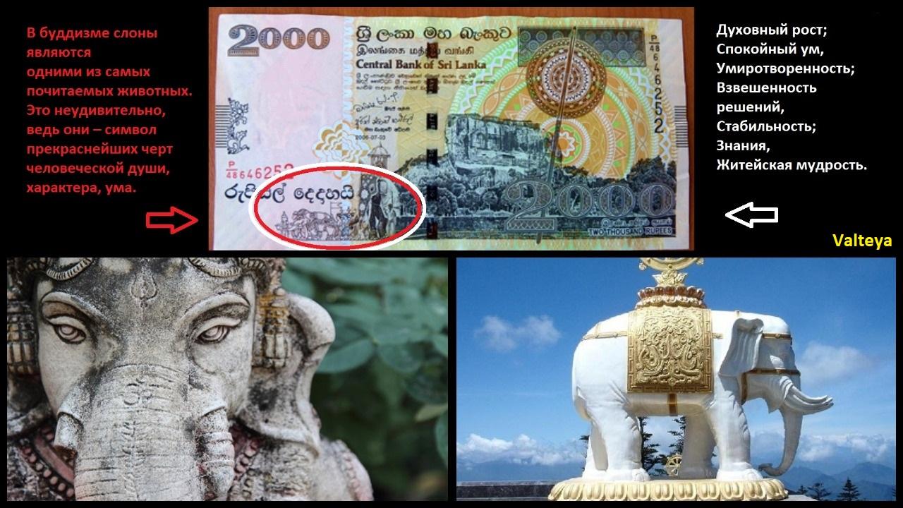 ШРИ-ЛАНКИЙСКАЯ (ЛАНКИЙСКАЯ) РУПИЯ / Деньги Шри Ланки / Деньги мира / Деньги талисманы. NLWgxJFJU3g