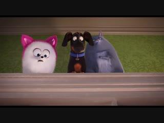 Тайная жизнь домашних животных 2: Дублированный тизер-трейлер