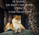 Олег Рой фото #3