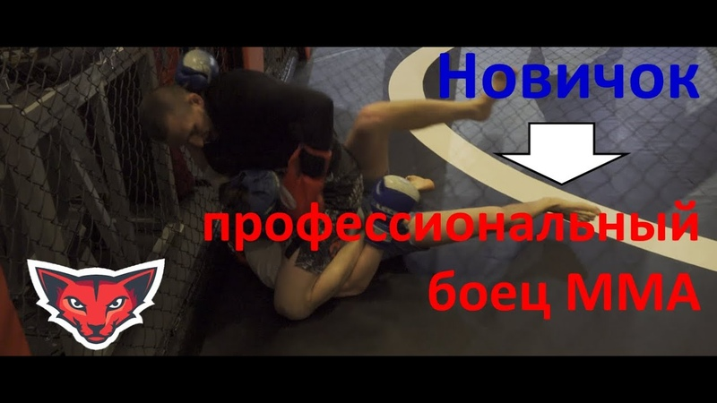 Как стать профессиональным бойцом ММА. Эффективная техника прохода в ноги. Правильные спарринги