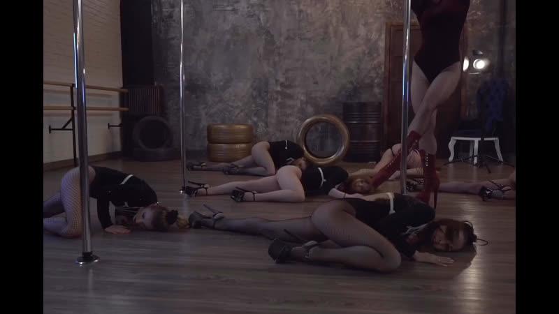 Exotic Dance Кудрово Европейский пр 21 2