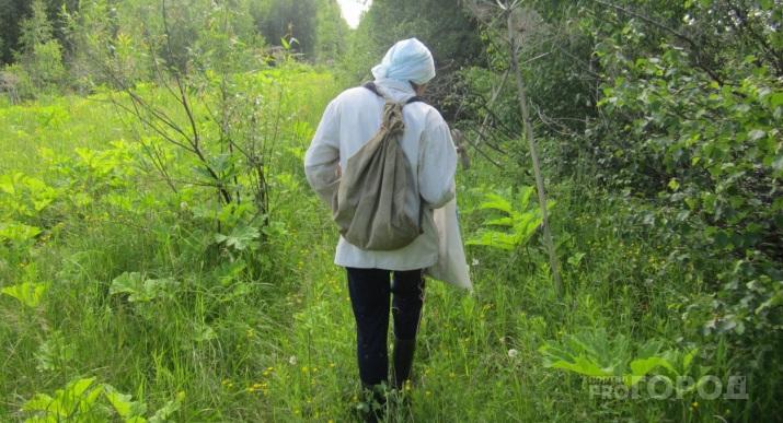 Более 20 жителей Марий Эл бесследно исчезли