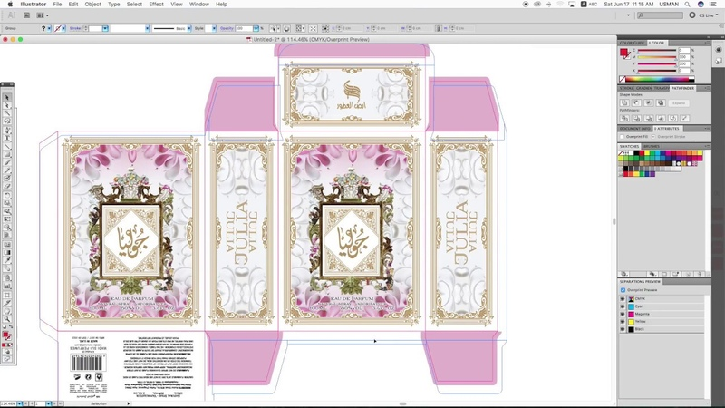 How to Make 3D Mockup Online Adobe Illustrator Packaging Design Advance