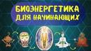 Видеокурс Биоэнергетика для начинающих. 7 практических уроков . Дарья Абахтимова