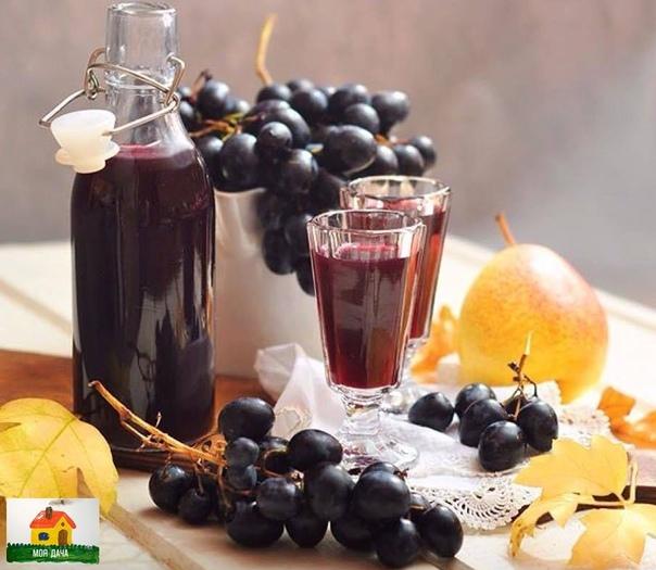 НАЛИВКА ИЗ ВИНОГРАДА ИЗАБЕЛЛА Божественный аромат и не менее потрясающий вкус!Ингредиенты:1 кг винограда Изабелла или Лидия700 мл водки300 г сахара100 мл водыКак готовить:Сварить сироп из