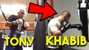 Tony vs Khabib Training Side By Side Pads Heavy Bag Wrestling