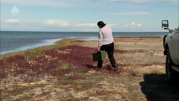 Озёра на вершине мира 5 Убсу Нур в Монголии Познавательный путешествие природа 2011