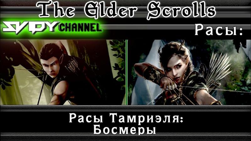The Elder Scrolls Расы Тамриэля Босмеры Лор