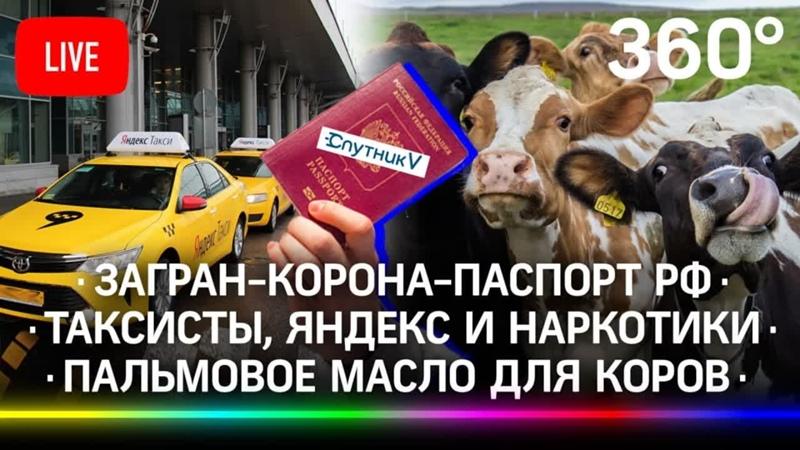 Загран-корона-паспорт РФ Таксисты, Яндекс и наркотики Пальмовое масло для коров