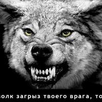 Фотография Максима Малея ВКонтакте