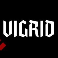 vigrid_brand