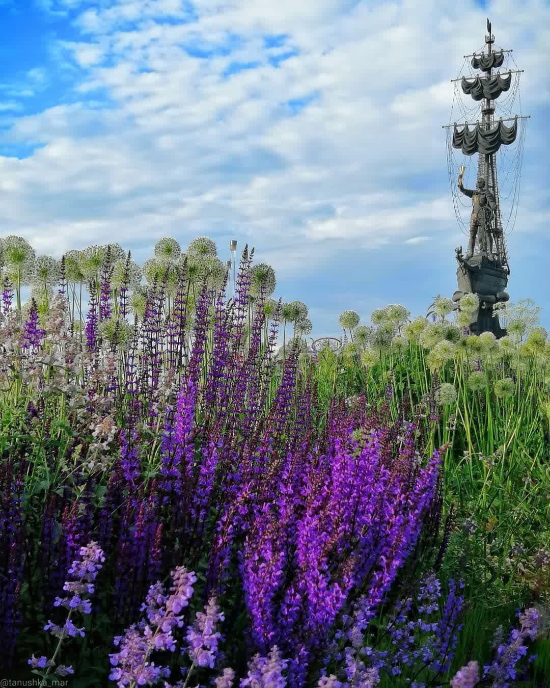Летнее настроение в парке искусств Музеон