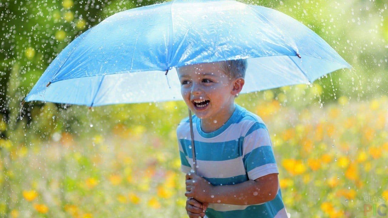 Сегодня в Можге обещают дождь, но жара