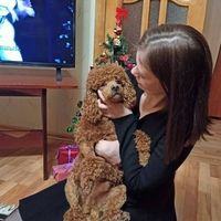 Фотография профиля Ольги Кравцовой ВКонтакте
