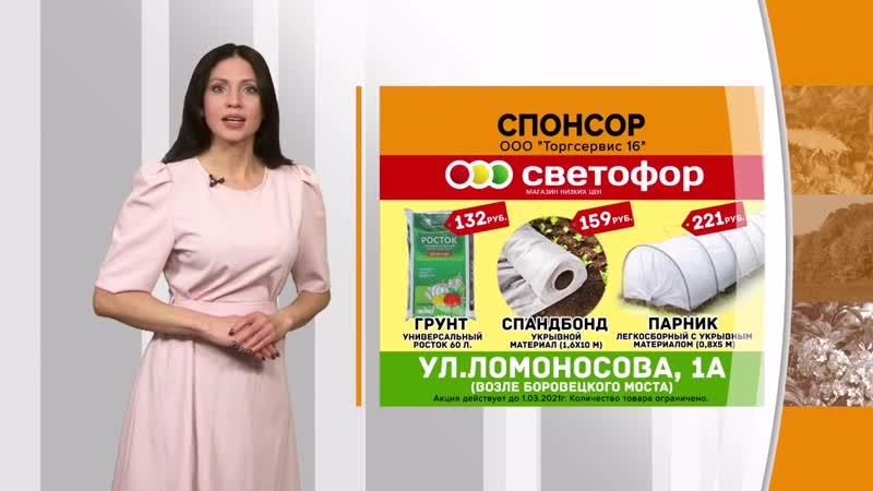 товары для дачи в магазине Светофор mp4
