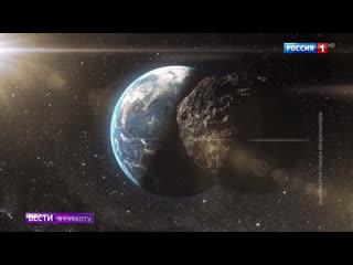 Жизнь в вакууме: какие организмы выживают даже в космосе