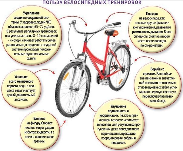 польза велосипеда от простатита
