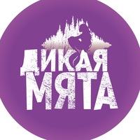 Логотип Дикая Мята