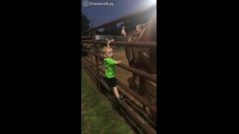 Малыш седлает лошадь mp4